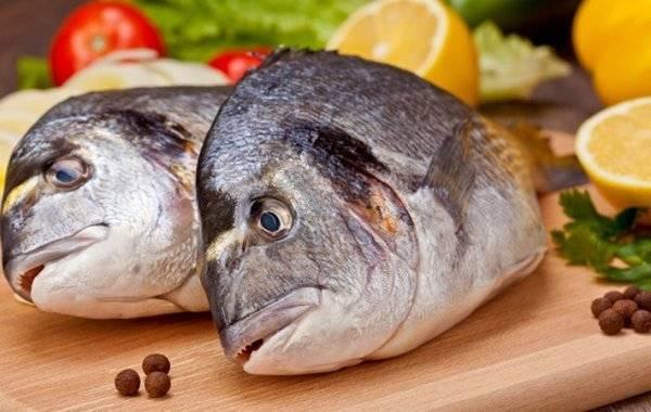 Рыба лимонелла — польза и вред | польза и вред