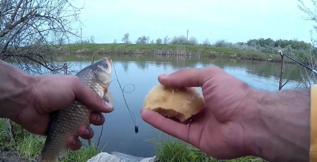 Весенняя рыбалка накарася