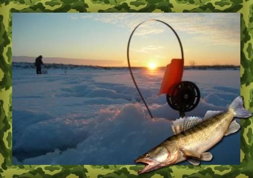 Летние жерлицы (28 фото): для ловли щуки и судака. как ставить оснастку на рыбалке? жерлица-кружок и другие виды