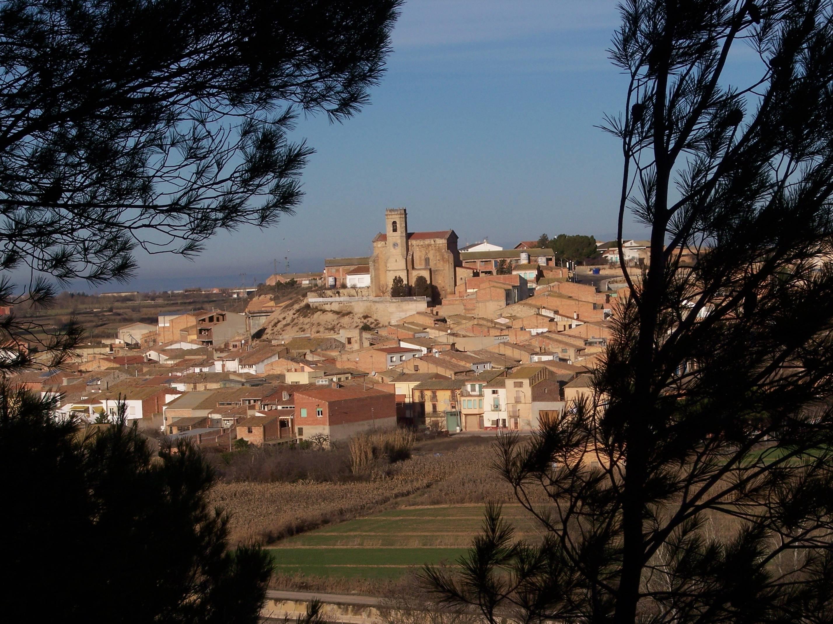 Generalitat de catalunya - generalitat de catalunya