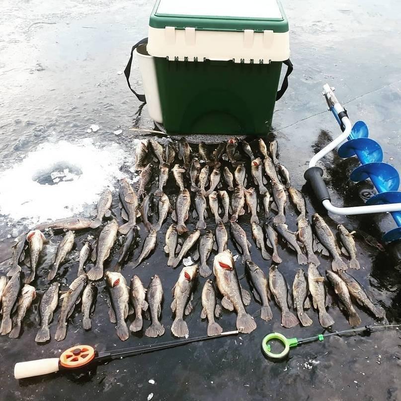 Рыбалка в Липецкой области зимой