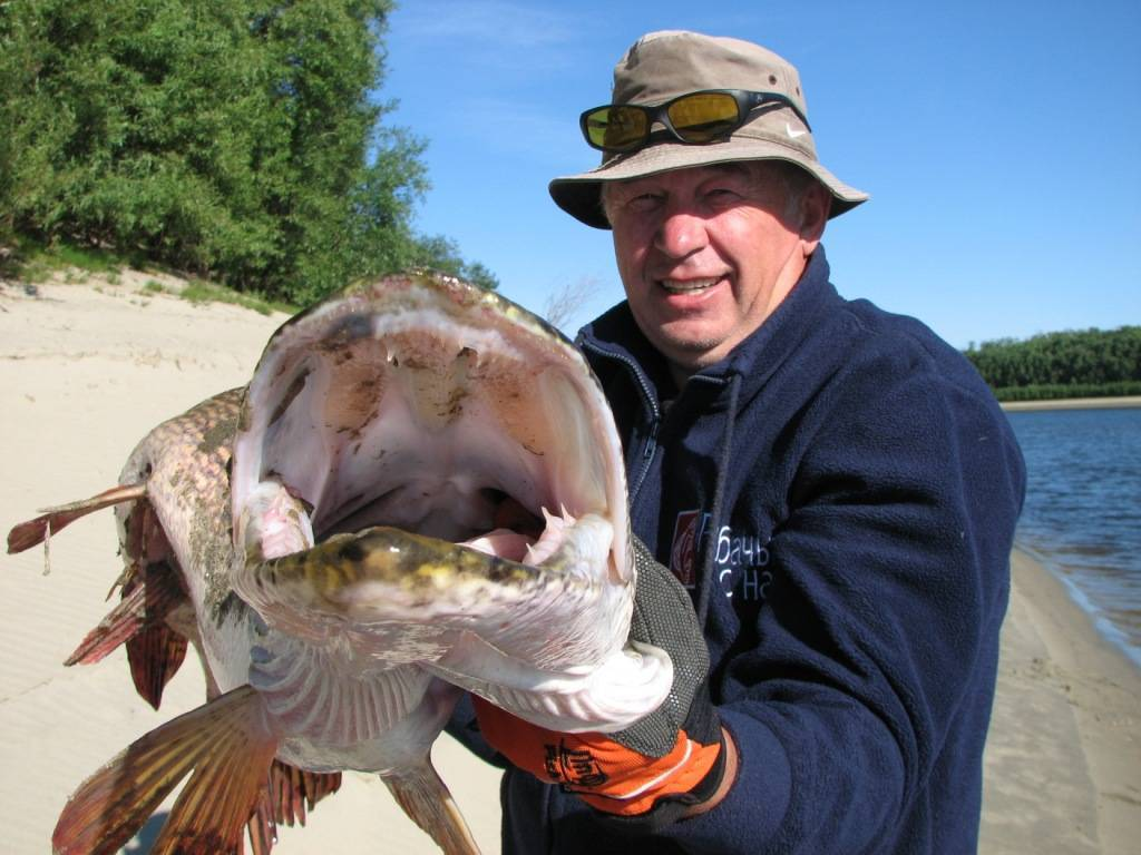 Рыбалка в свердловской области: известные реки и озёра региона, места для платной рыбалки