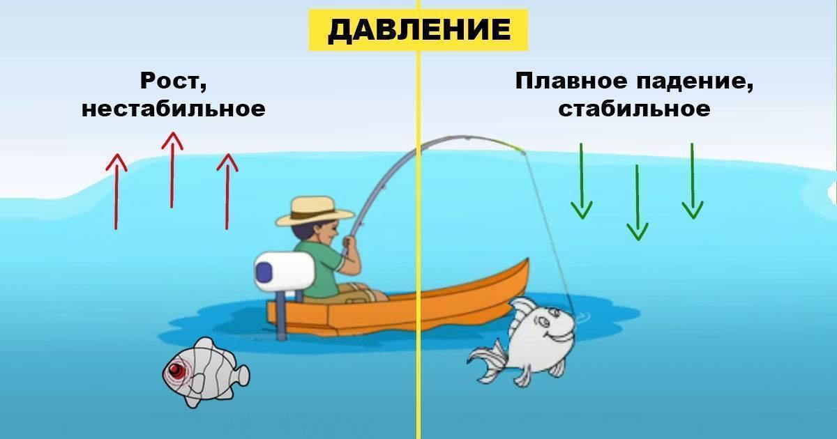 «погода для рыбалки», или в какую погоду лучше клюёт?