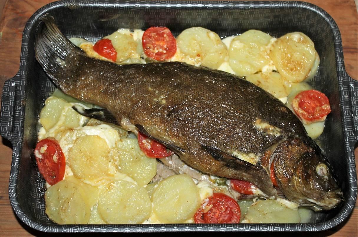 Лакедра: что это за рыба, описание, рецепты приготовления в духовке, отзывы о блюдах