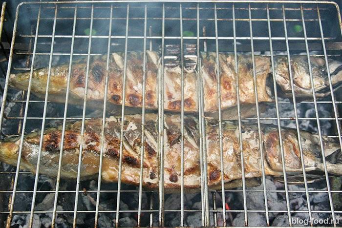 Шашлык из стерляди / шашлык из рыбы / tvcook: пошаговые рецепты с фото