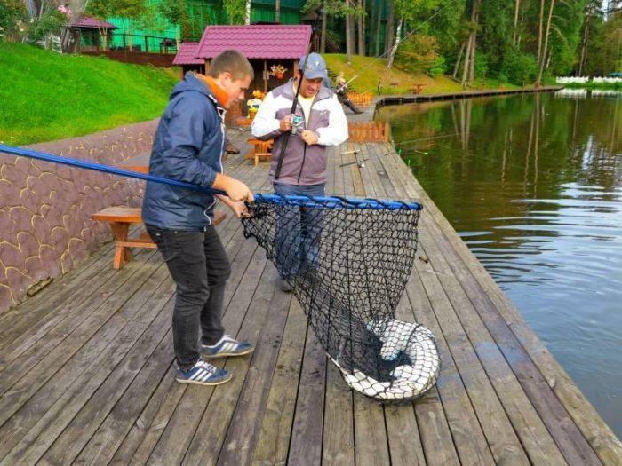 Рыбалка в красногорске: ловля карпа на платном пруду