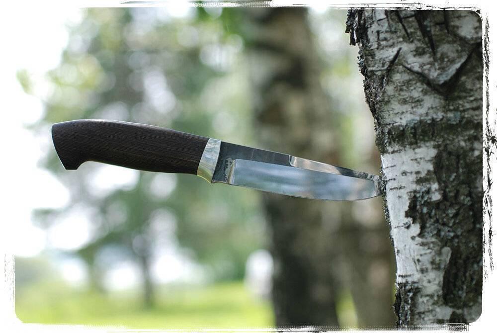 Филейный нож, назначение, функциональные свойства, тонкости выбора