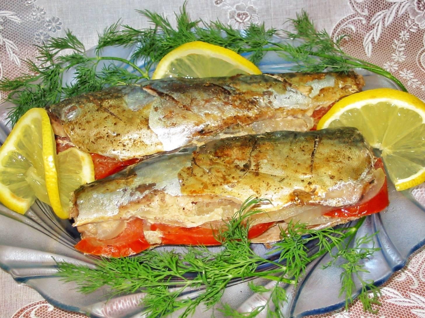 Рыба жерех: фото, описание, обитание, семейство