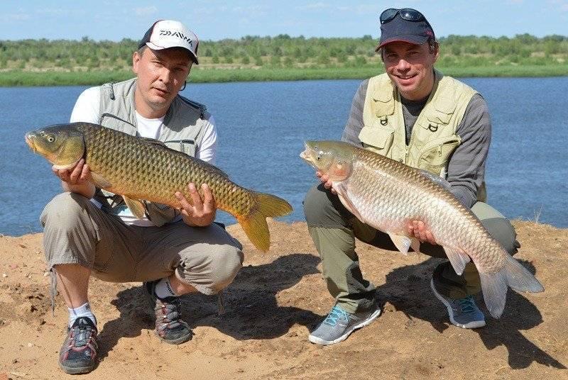 Рыбалка в астраханской области: лучшие места и способы ловли
