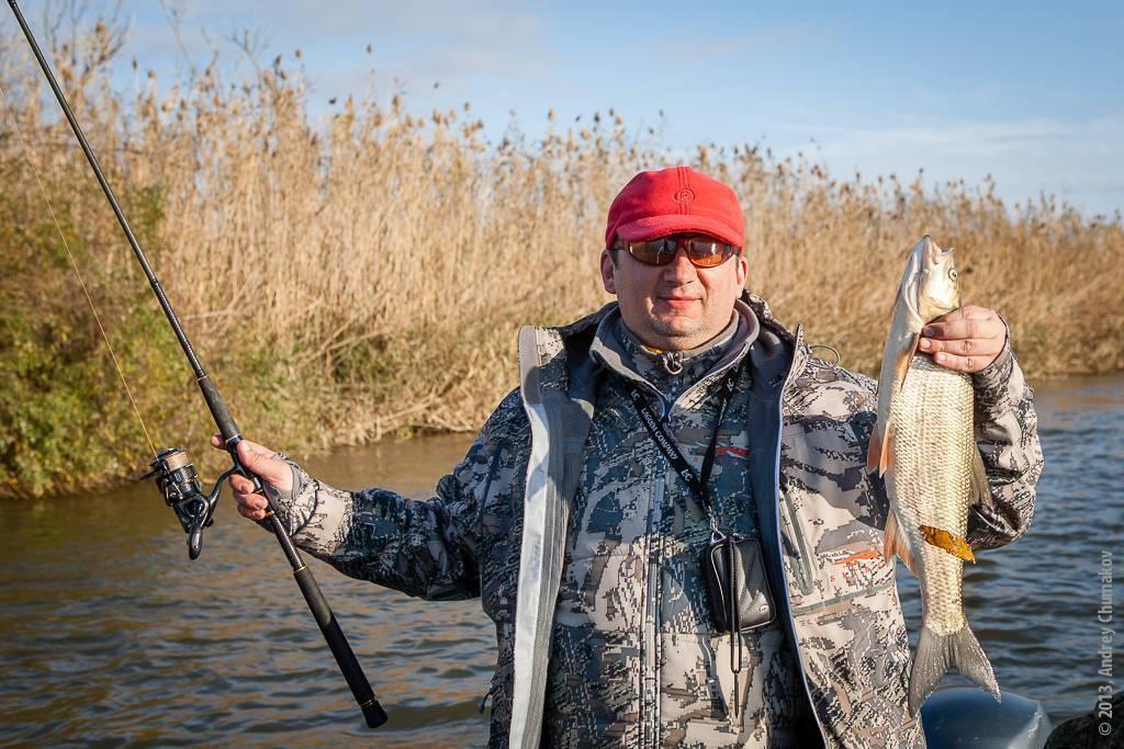 Главная рыба астраханской области. как сейчас ловится | kaspyinfo.ru