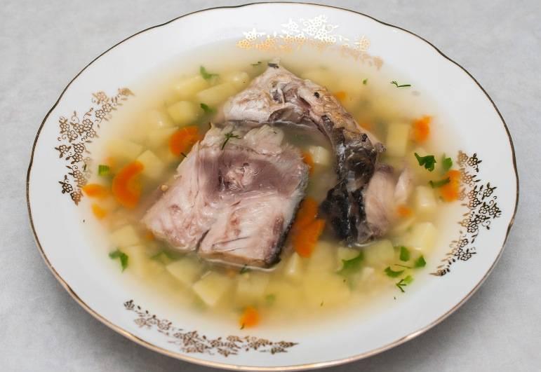 Уха классическая с картошкой из речной рыбы рецепт с фото пошагово и видео - 1000.menu