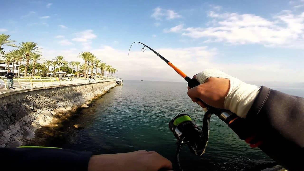 Рыбалка — что делать, когда рыба не хочет клевать