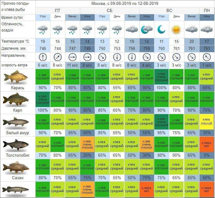 Календарь рыбака август 2020 лунный рыболова, клева рыбы, рыбалки