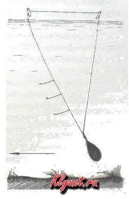 Ловля чехони на резинку: оснастка и техника ловли