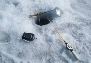 Ловля судака зимой на тюльку: на жерлицы, мормышку и другие снасти, техника и тактика