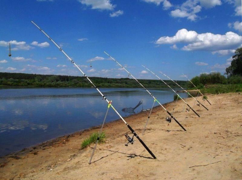 Как рыбачить на донку: как ловить и что ловят на донную снасть