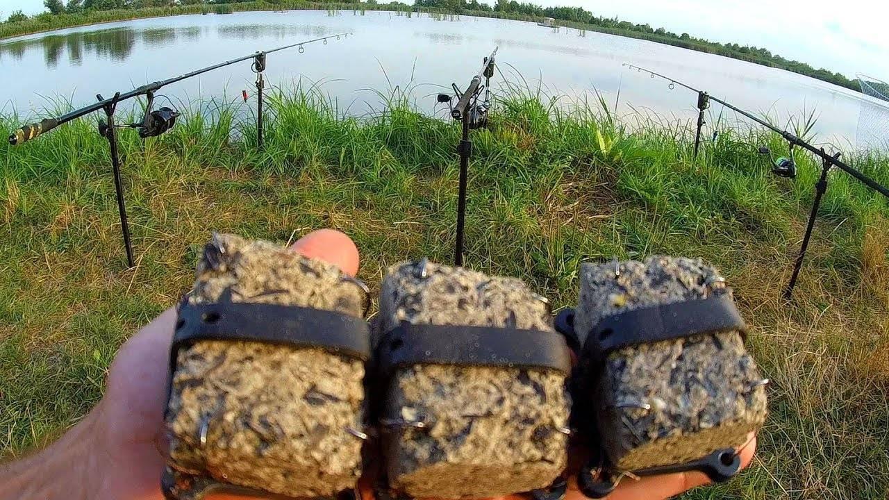 Что такое пеллетс. пеллетс для рыбалки своими руками