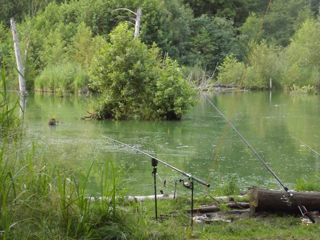 Рыбалка в орловской области: пруды, платные водоемы