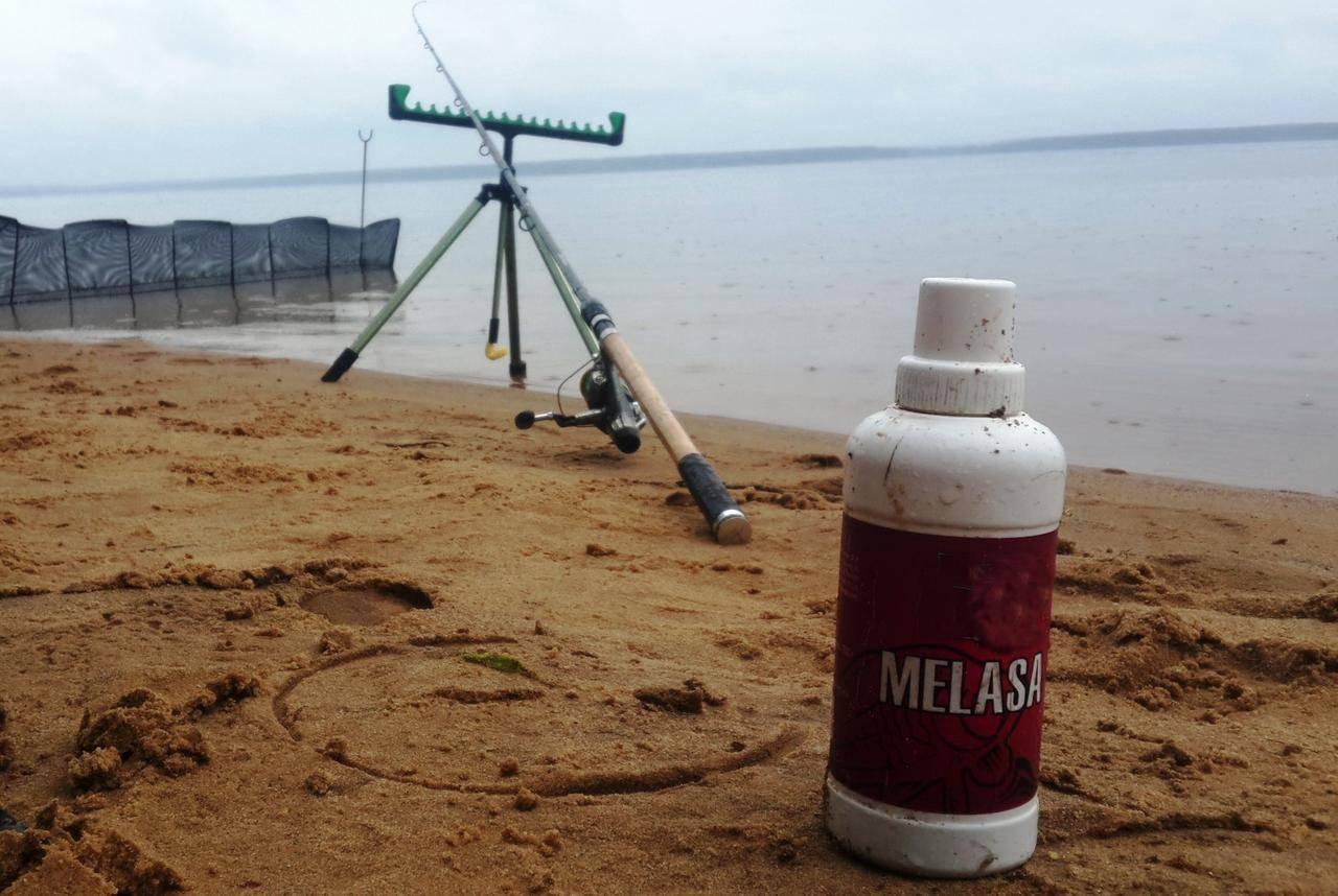 Меласса для рыбалки — особенности и преимущества