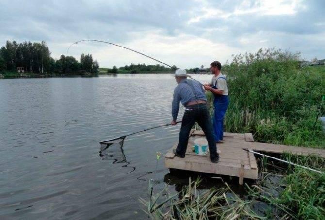 Рыбалка в чеховском районе московской области — лучшие места для ловли, какая рыба водится