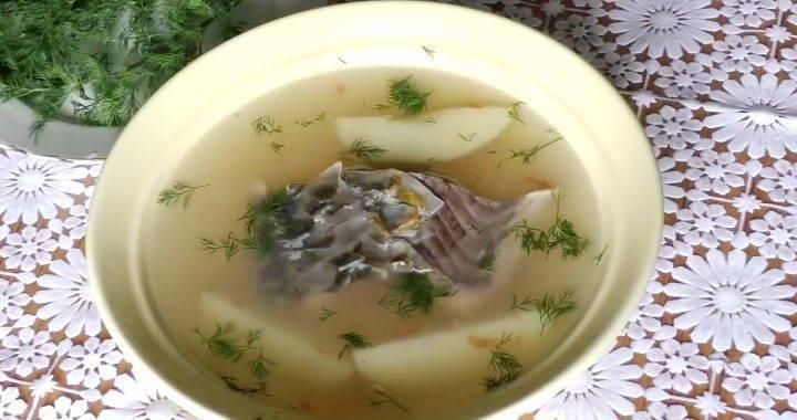 Рыбный суп из сазана - вкусные рецепты от ecofoodferma.ru