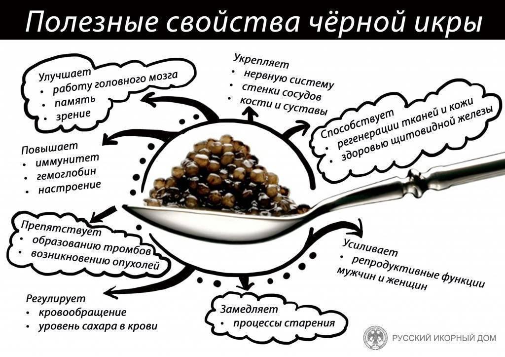 Черная икра: полезные свойства, противопоказания, рецепты