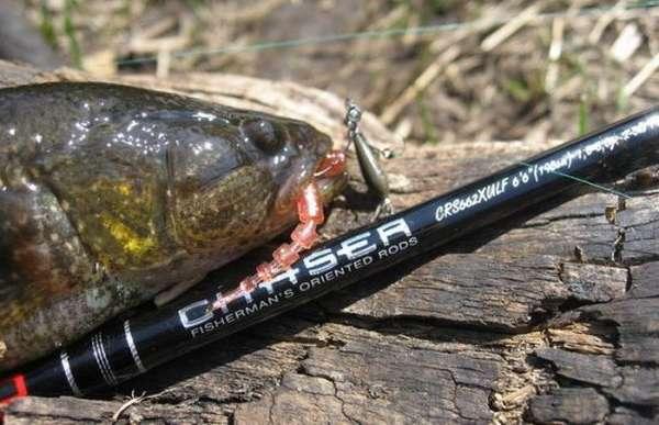 Рыбалка на спиннинг | спиннинг клаб - советы для начинающих рыбаков спиннинг для микроджига, как выбрать? рейтинг топ 5 палок