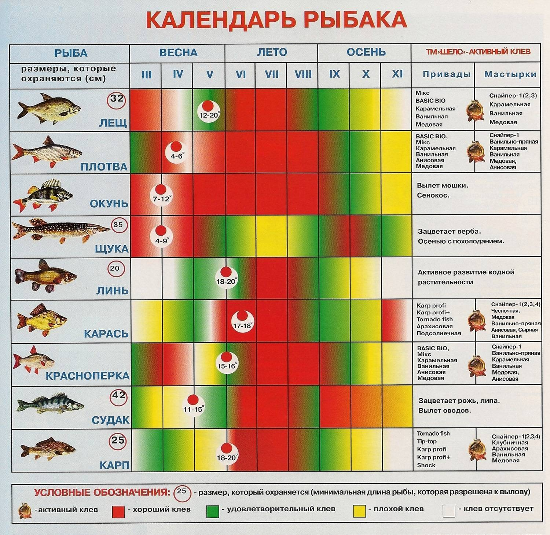 Погода для рыбалки: атмосферные явления и клёв