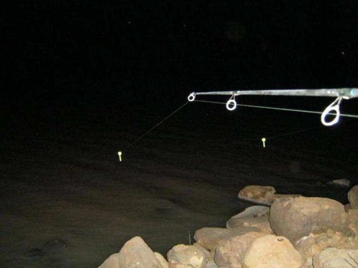 Ночная рыбалка: снасти и тактика. о поплавках и светлячках.