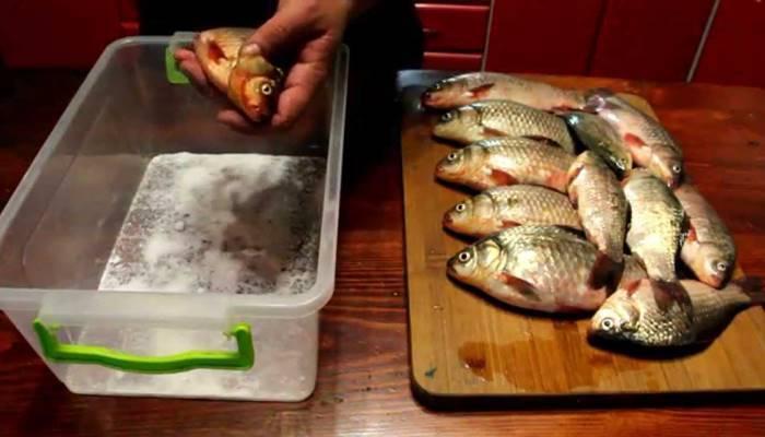 Как солить и вялить карася: рецепт приготовления в домашних условиях, способ хранения вяленой рыбы