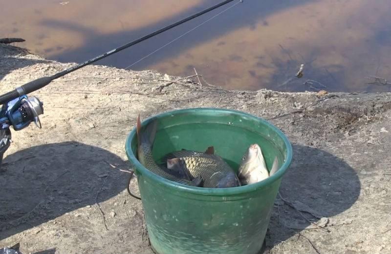Ловля карася в апреле - на поплавочную удочку, фидер и донку