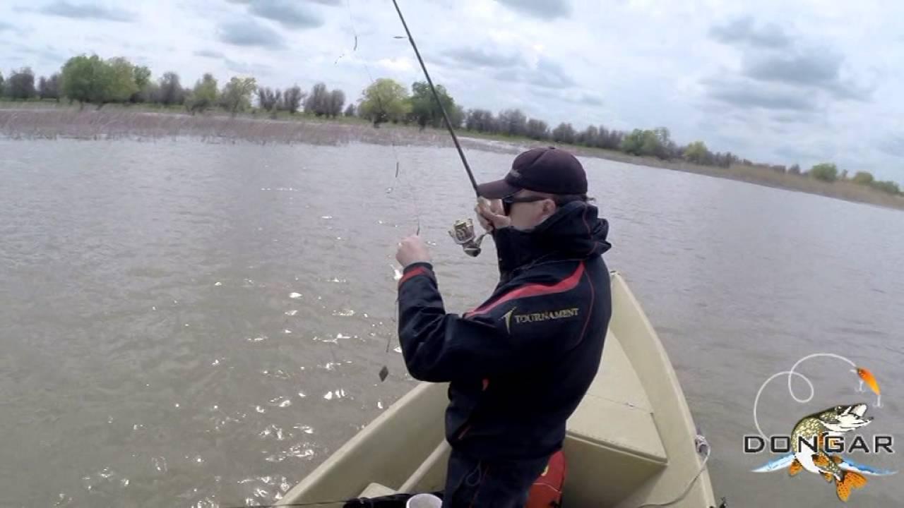 Выбор cнастей для рыбалки на ахтубе   какие нужны cнасти для рыбалки на нижней волге (спиннинг, катушка, леска и приманки)