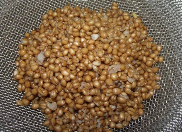 Ферментированная пшеница для рыбалки как приготовить - рыбалка