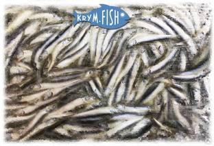 Рыба хамса: польза и вред, описание вида с фото