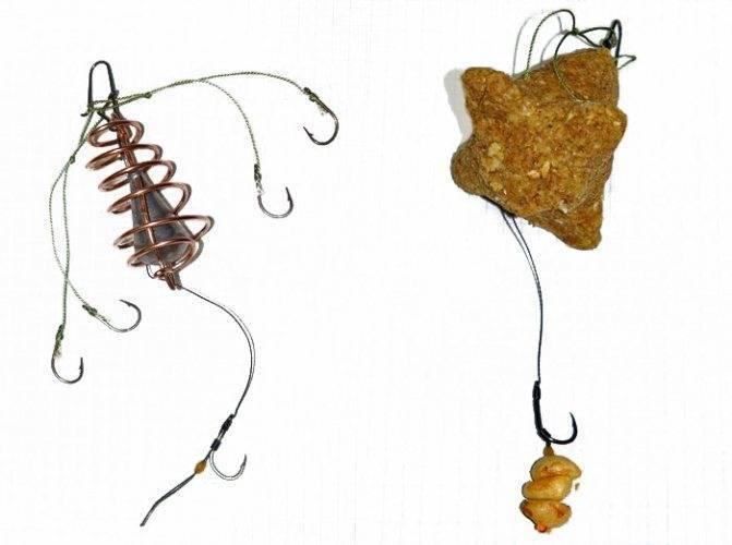 Ловля карпа на соску: изготовление и способы ловли
