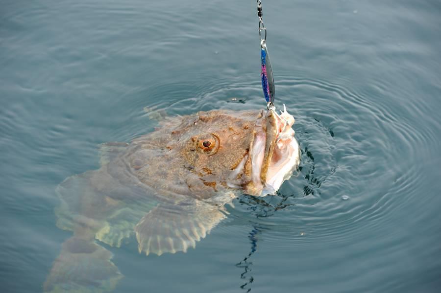 Нюансы морской рыбалки и все, что для нее нужно