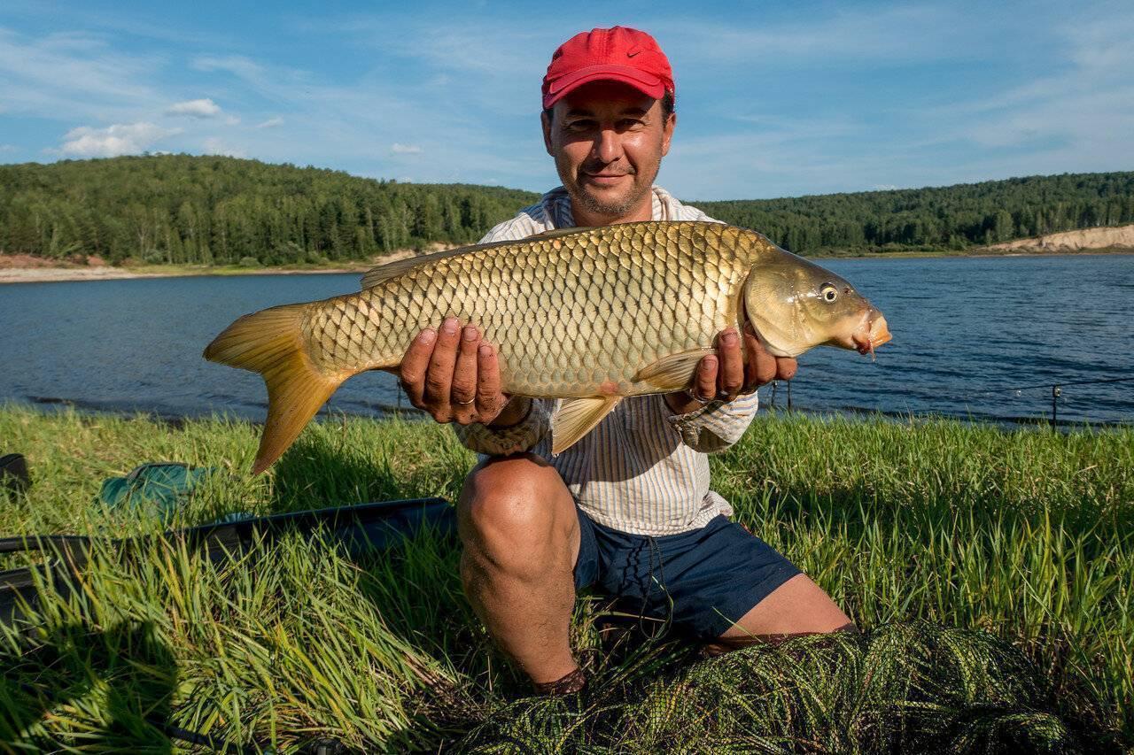 Рыбалка на красноярском водохранилище: рыбные места, отзывы