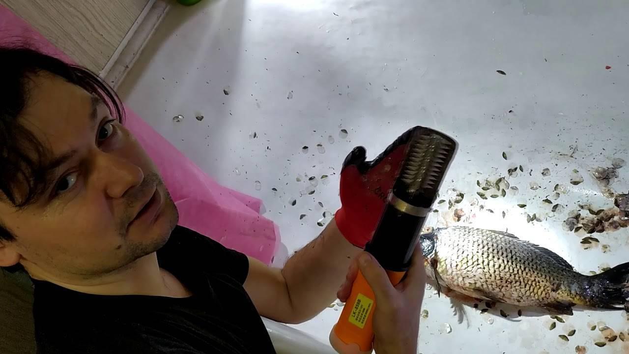 Как почистить и разделать карпа в домашних условиях