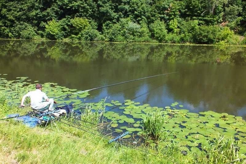 Рыбалка в ростове-на-дону: где и когда лучше ловить? :: syl.ru