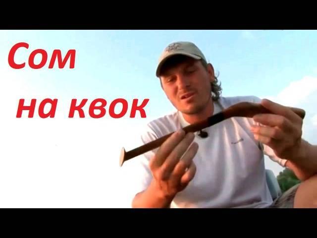 7 лучших способов и наживок для ловли сома