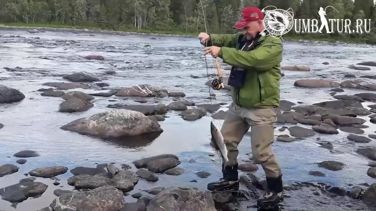 Рыбалка на кольском полуострове зимой и летом