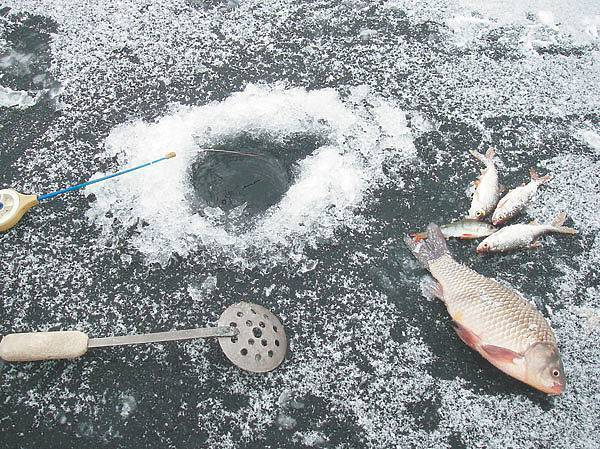 Зимняя рыбалка по первому льду