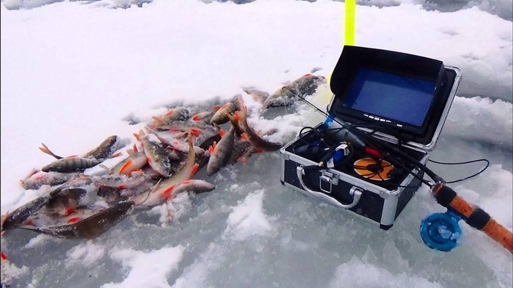 Топ 20 лучшие подводные камеры для рыбалки (рейтинг 2020)