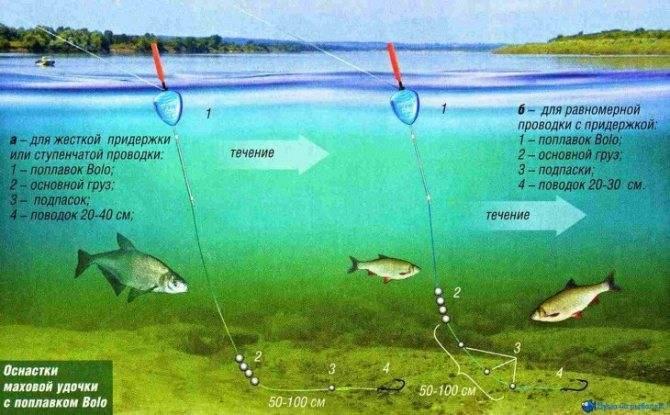 Отчет о рыбалке на искусственном канале в городе Корюковка