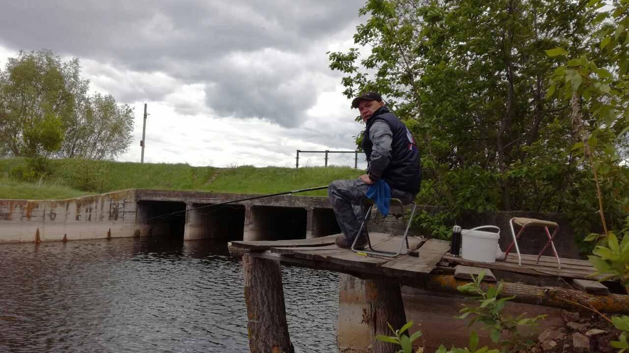 Рыбалка в тольятти: характеристика основных мест ловли, видовое разнообразие рыбы