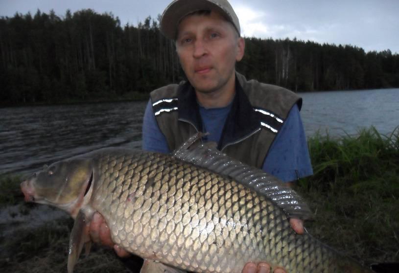 Рыбалка в ульяновской области и в ульяновске в 2018 году