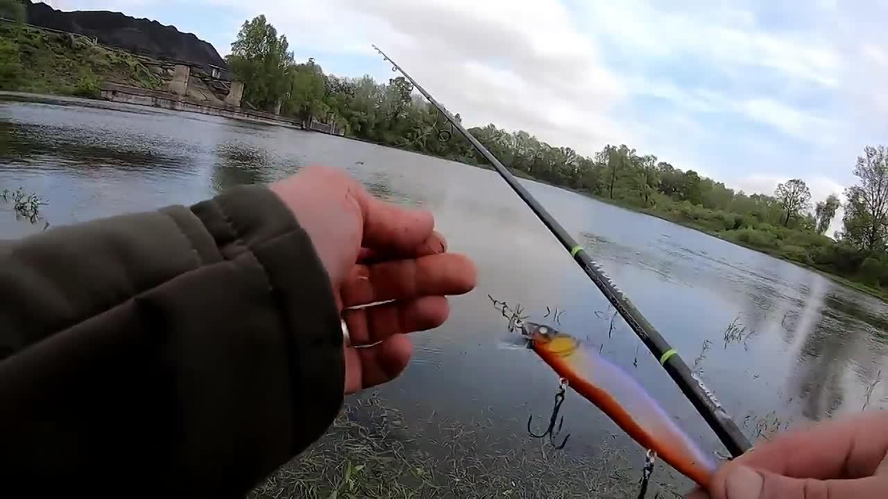 Твичинг: лучшая техника для ловли щуки в летний период