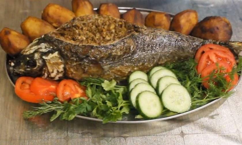 Рыба сазан — 6 вкусных рецептов приготовления, как запечь в духовке или пожарить на сковороде - rus-womens