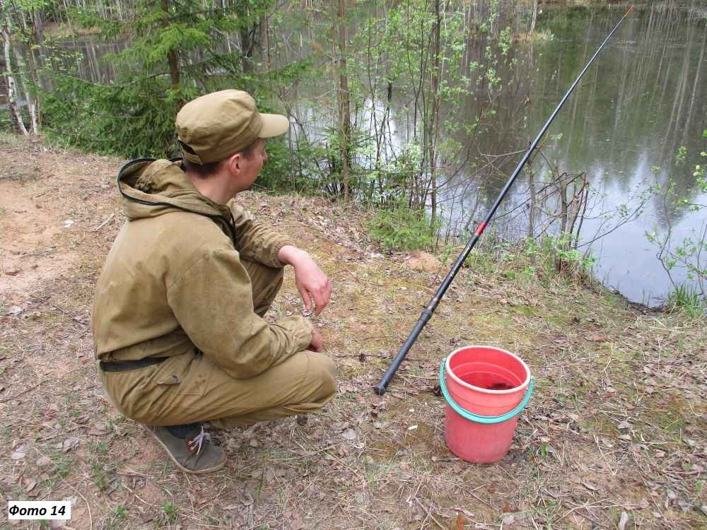 Как поймать окуня на поплавочную удочку в пруду или на озере?