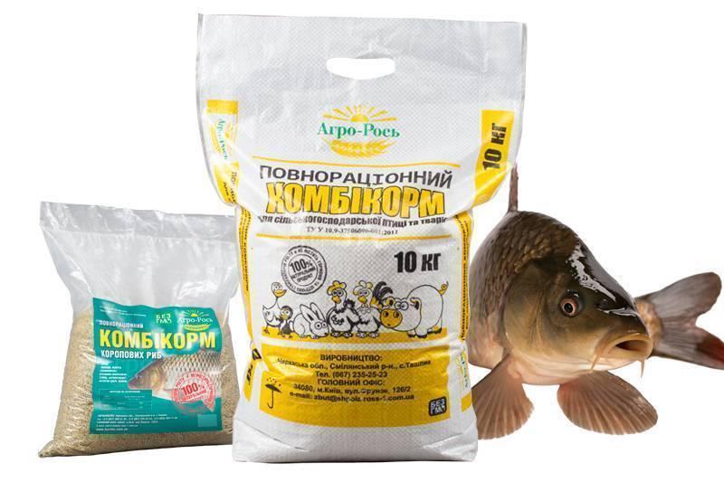 Прикормка для рыбы своими руками